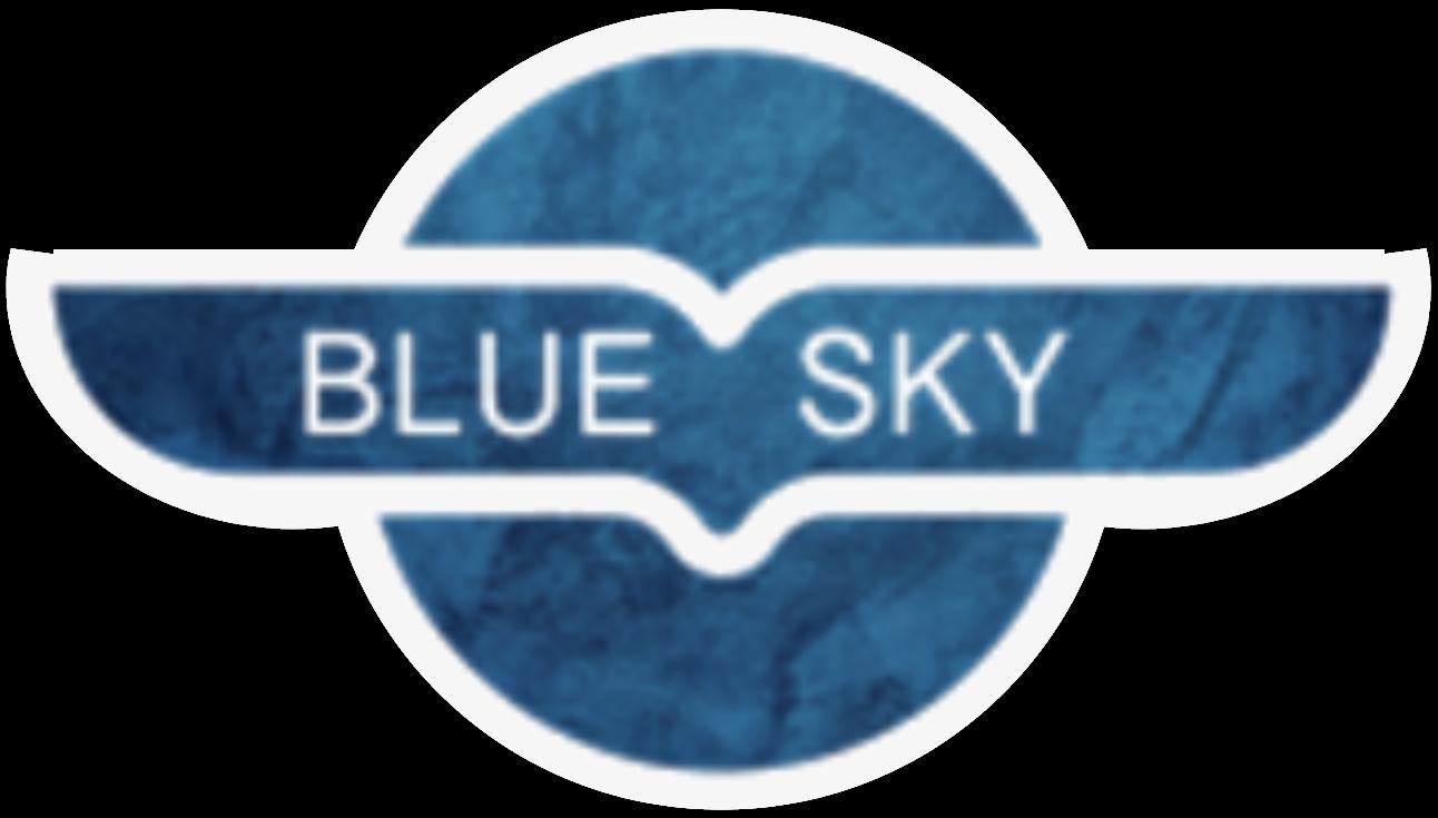 Blue Sky Exit Planning & CFO Services